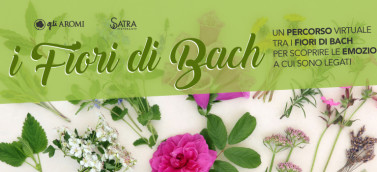 fiori_copertina