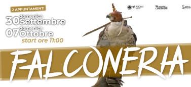 involo-coi-rapaci_evento_COPERT